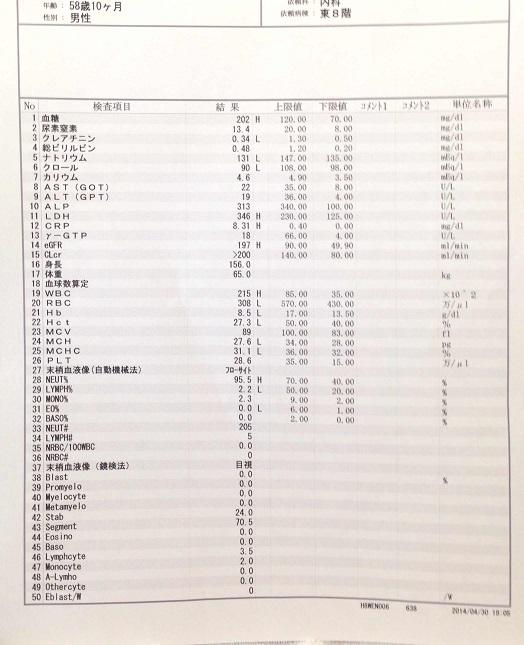 縮小検査詳細情報20140430.jpg